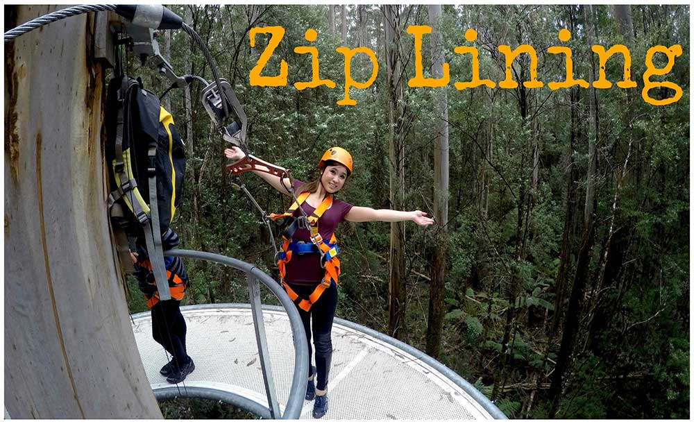 zip lining at otway fly